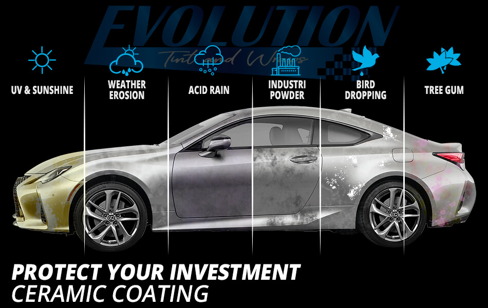 car paint protection features